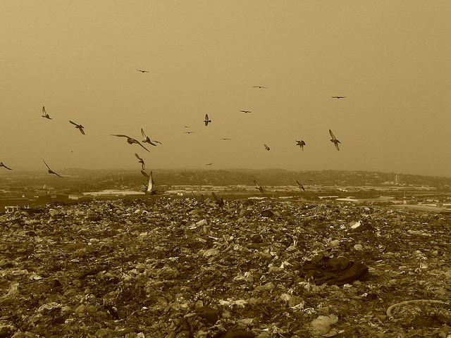 Landfill_garbage
