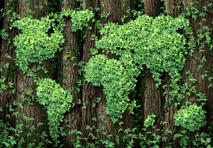 global-development-green-world
