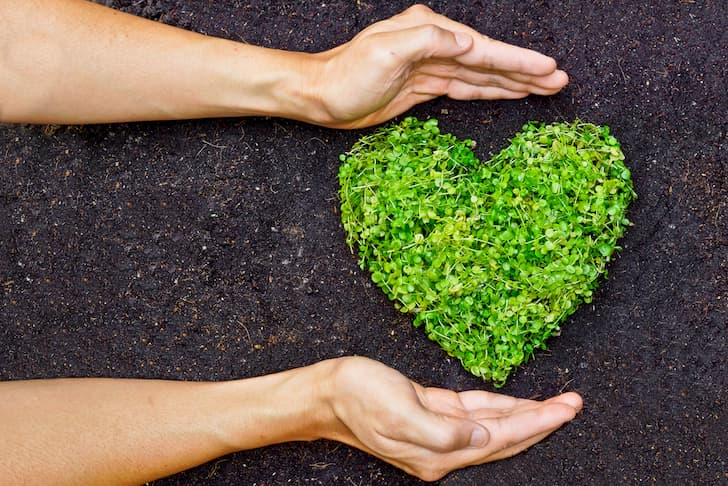 photo-hands-holding-green-heart-shaped