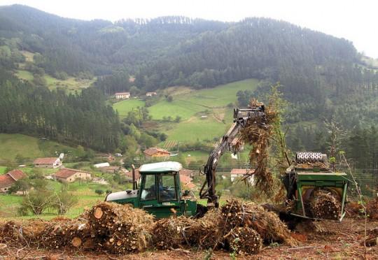 Biomass_harvesting
