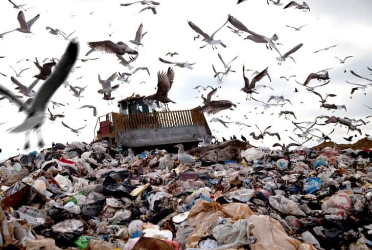 garbage-trash-landfill-site-environmental-concern