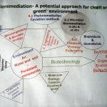 Bioremediation-poster