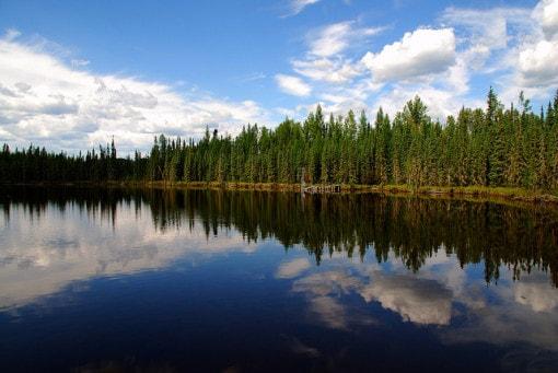 wetlands-near-utikuma-lake