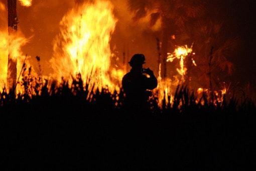 wildfire-at-Florida-Panther