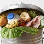 food-in-garbage