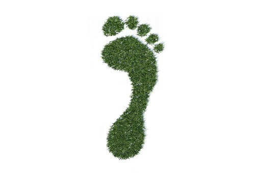 ecological-footprint