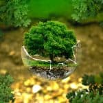 environment-protection-from-various-environmental-issues