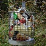 garbage-waste-basket-disposal