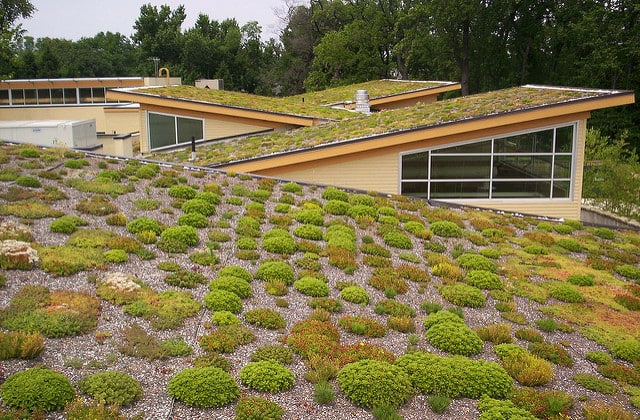 green-roof-cover