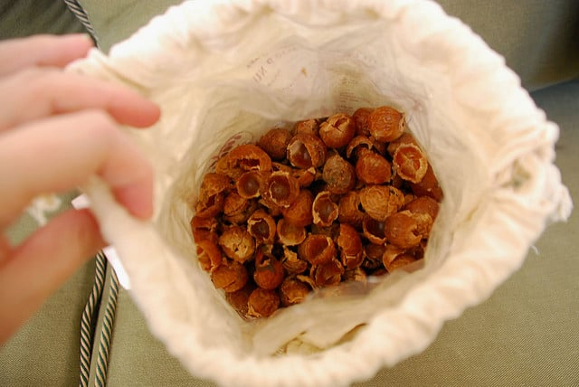 bag-of-soap-nuts