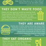 Environmentally friendly Denmark infographic