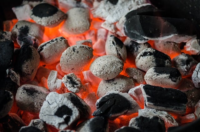 bbq-barbecue-coal-flame-grill
