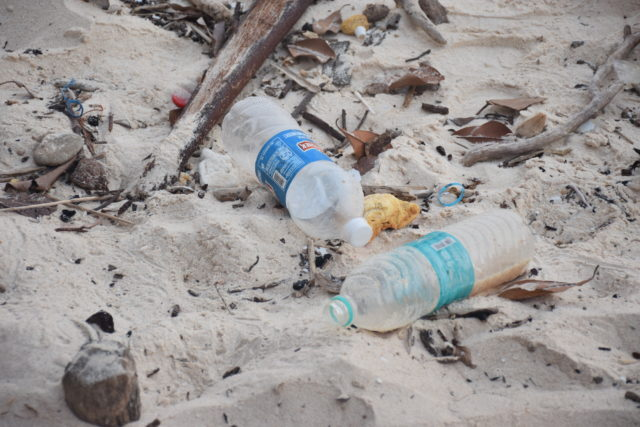 Plastic bottles on a beach in Havelock Island, India