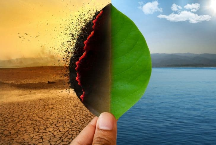 climate-change-crisis-global-warming-biodiversity