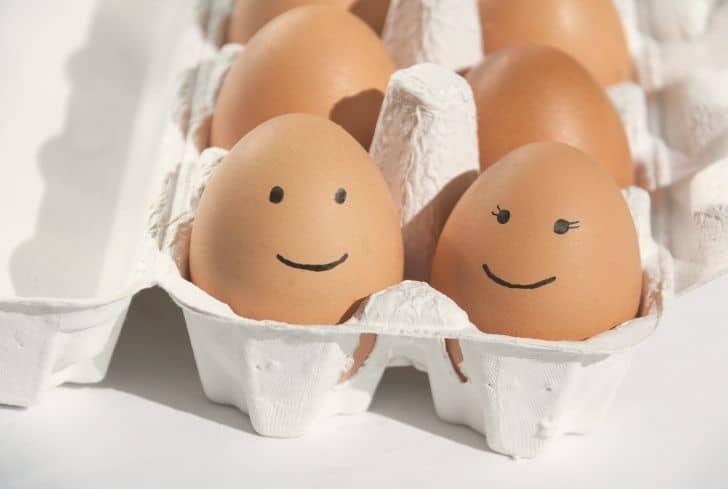 cardboard-egg-cartons